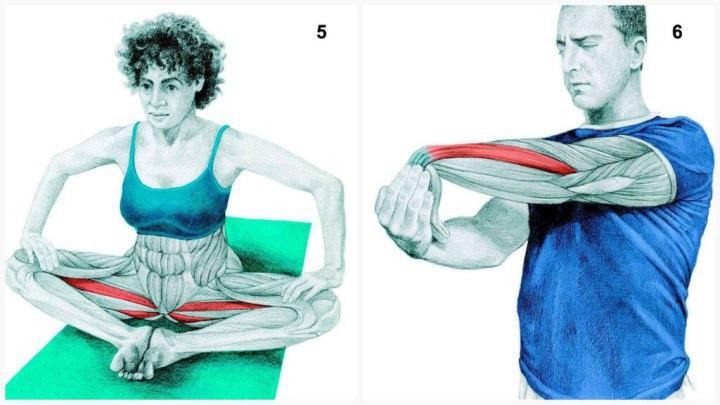 34-упражнения-на-растяжку-4
